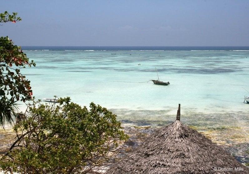 IMG_2413- Zanzibar