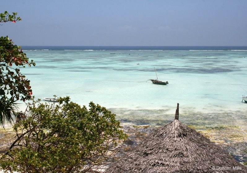 IMG_2413-Zanzibar Zanzibar – Africa's exotic spice island