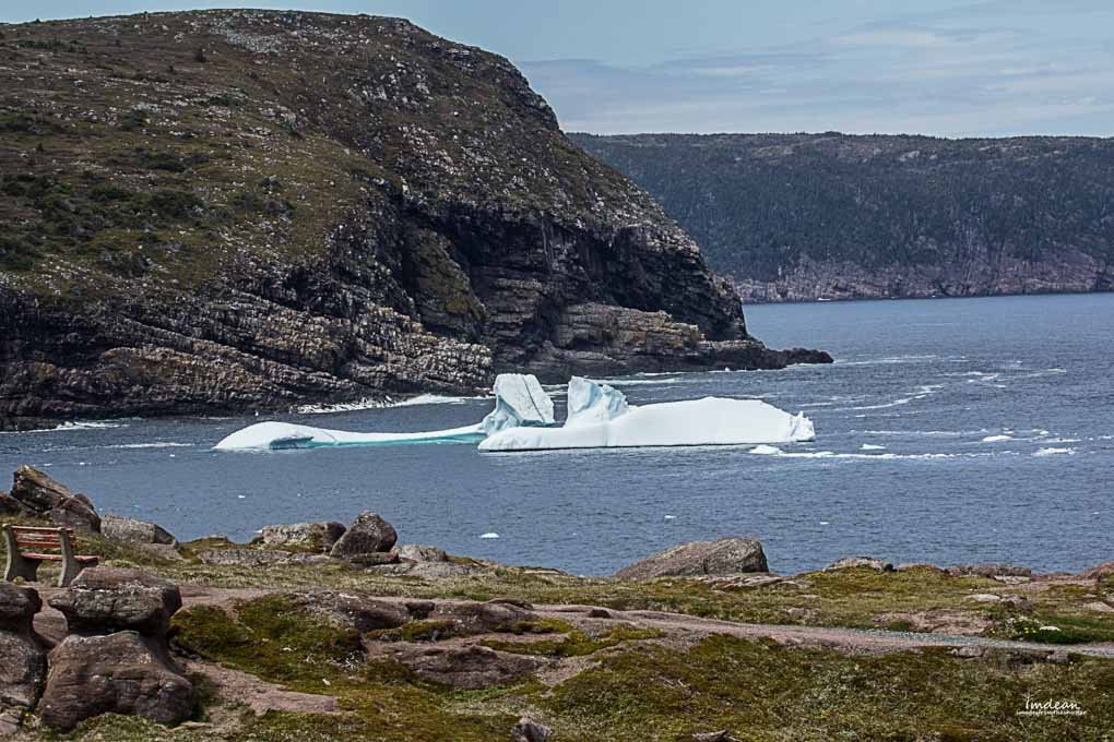 Majestic Giants – Icebergs Around Newfoundland
