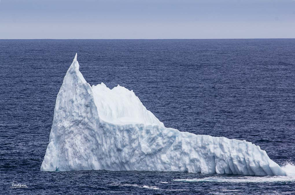 Icebergs-Newfoundland-4 Majestic Giants – Icebergs Around Newfoundland