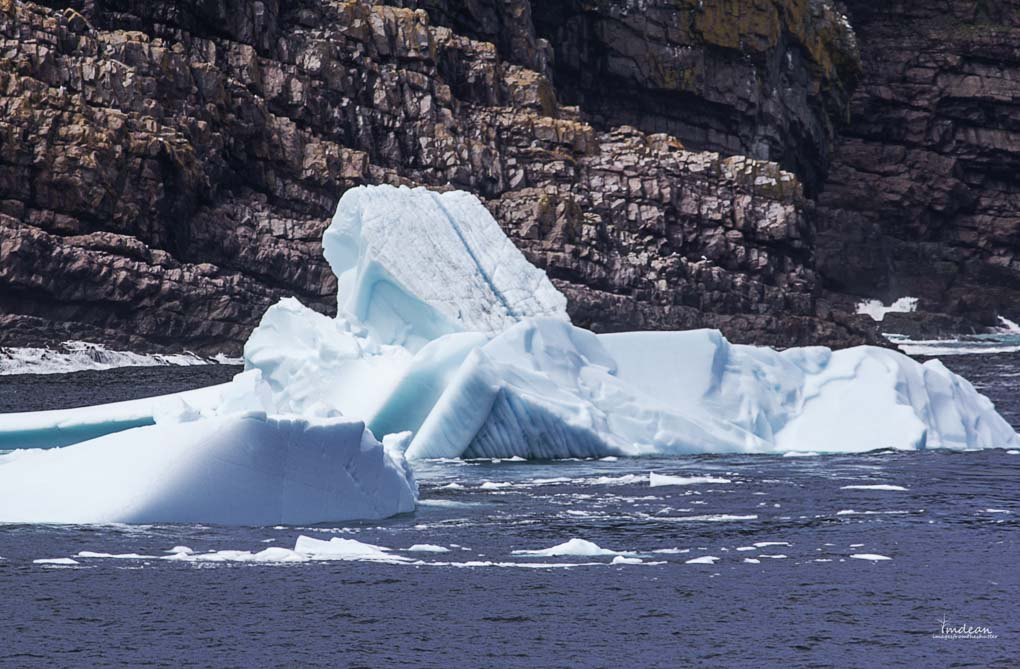 Icebergs-Newfoundland-5 Majestic Giants – Icebergs Around Newfoundland