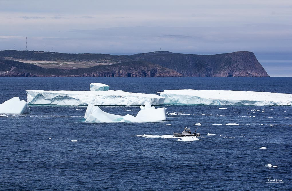 Icebergs-Newfoundland-6 Majestic Giants – Icebergs Around Newfoundland