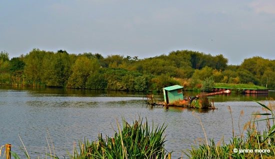 Image-11-and-a-half.-Attenborough-Nature-Reserve-Sunken-Gravel-Barge Derbyshire to Nottinghamshire, A Tranquil Canal and Riverside Walk