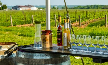 Ice Wine Tasting – Lakeview Wine Co,  Niagara-on-the-lake, Canada