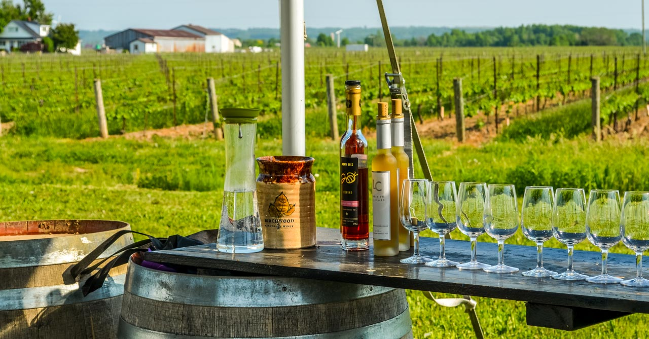 Ice Wine Tasting – Lakeview Wine Co, Niagara-on-the-lake, Canada 1