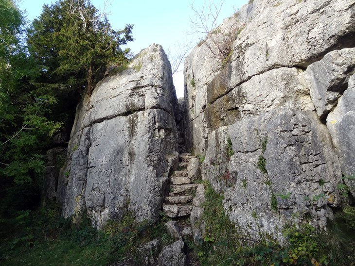 The Limestone Link Fairy Steps