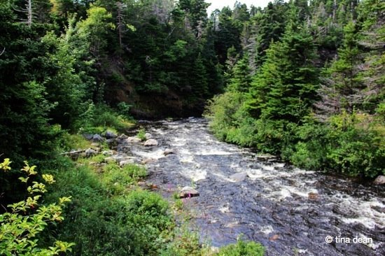 Newfoundland – The Manuels River Trail