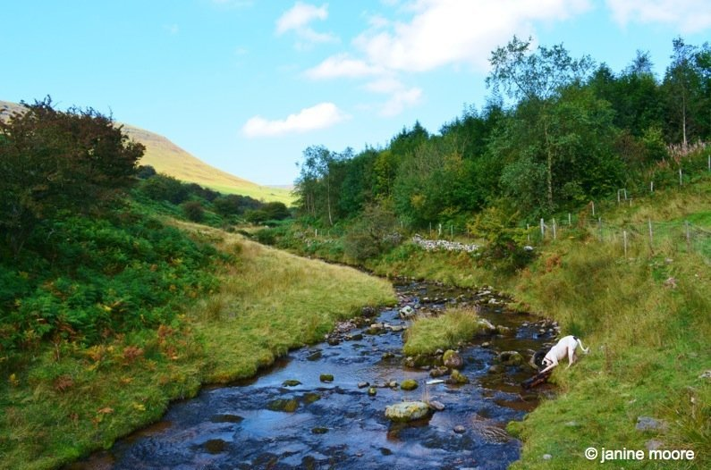 Max-playing-in-Stream-wales The Legend of the Welsh Black Mountains