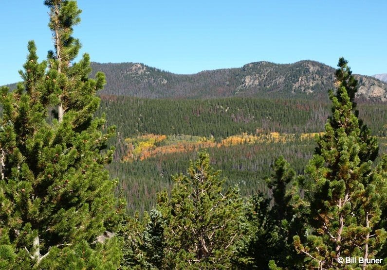 Mills Lake Trail – Rocky Mountain National Park
