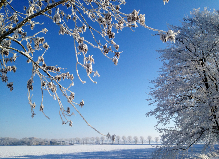 Netherlands Winter - A White Wonderland