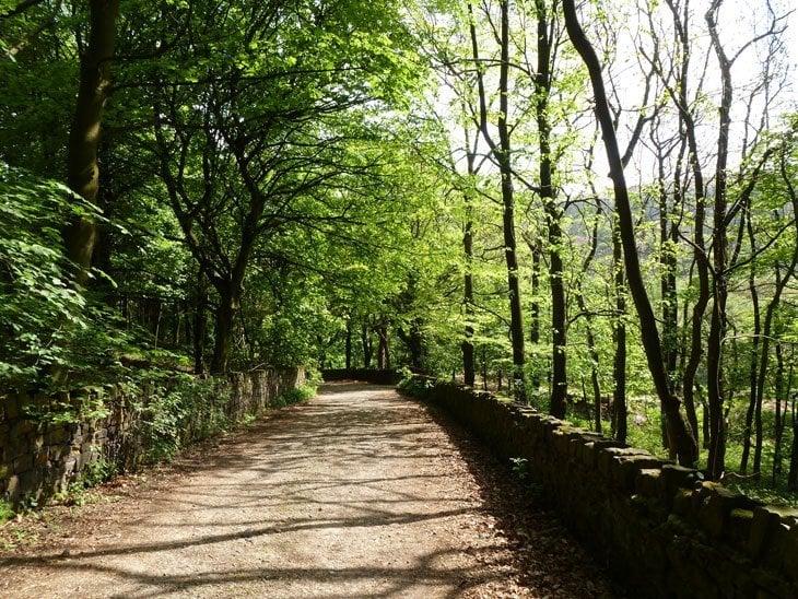 P1000635 Greater Manchester Hidden Beauty – Walkerwood Reservoir