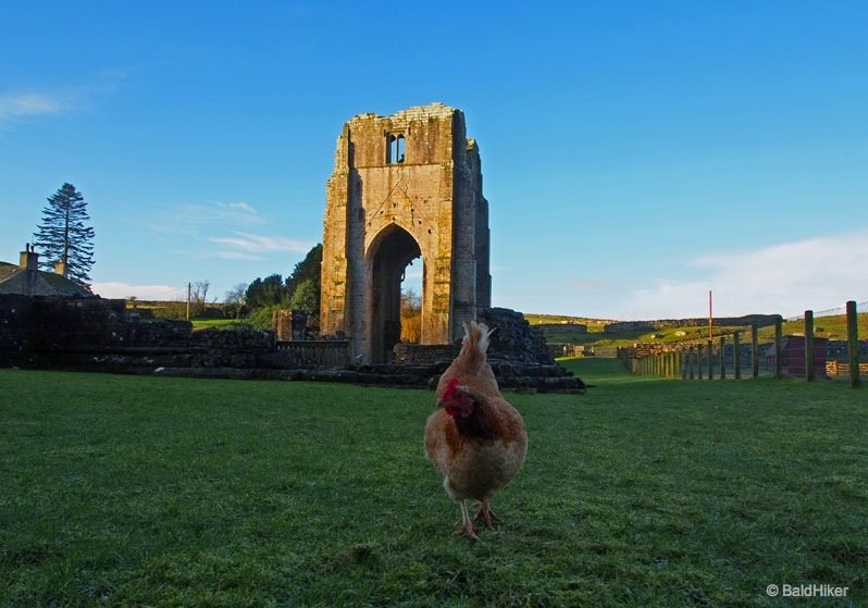 Shap Abbey – peaceful ruins in the Lowther Valley