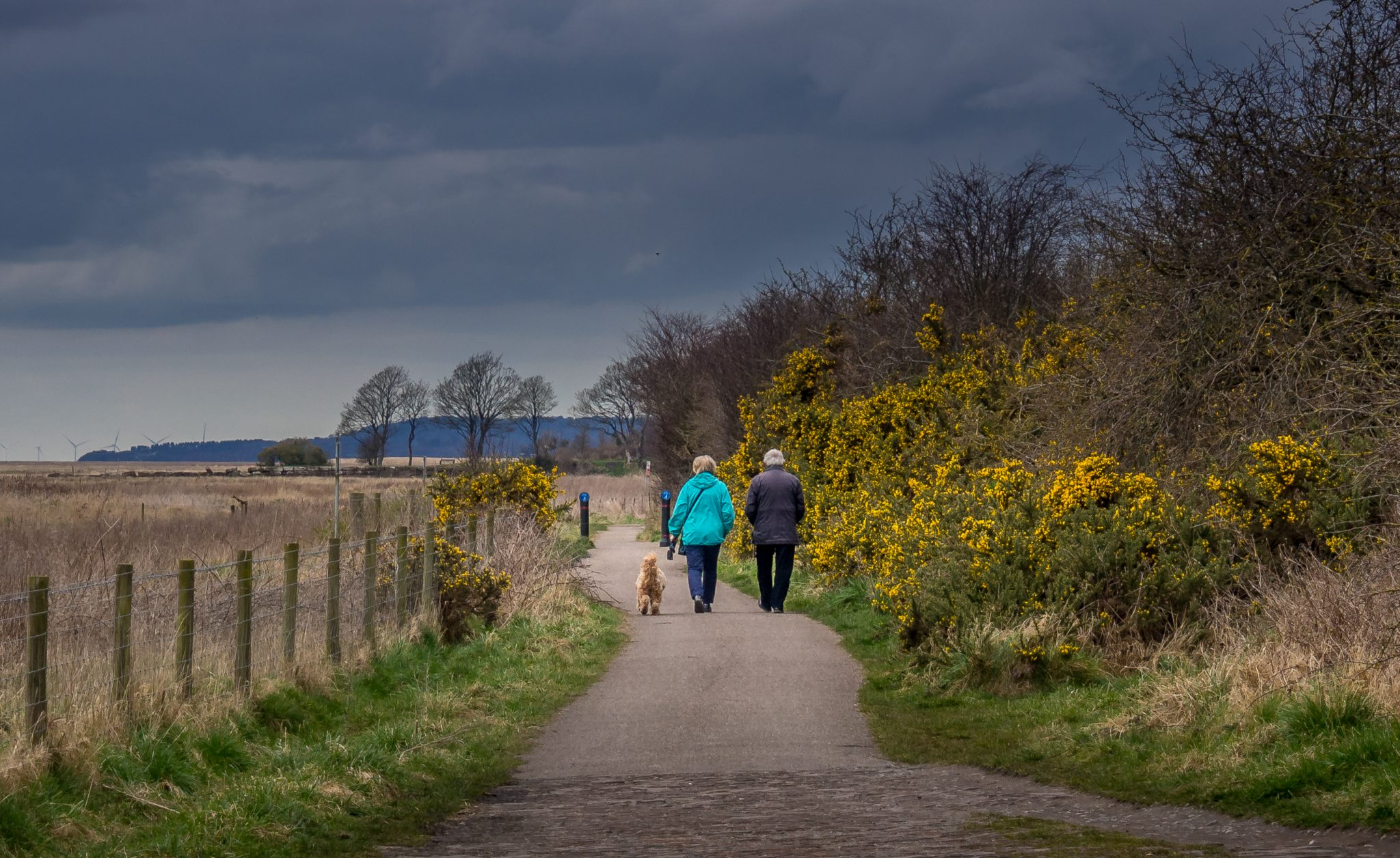 P3291348 Dee Estuary Walk - Connah's Quay To Neston