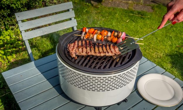 Summer Feasts With The Summit International Smokeless BBQ