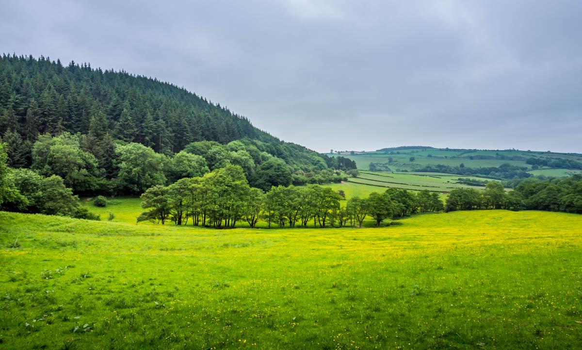 shropshire walk view