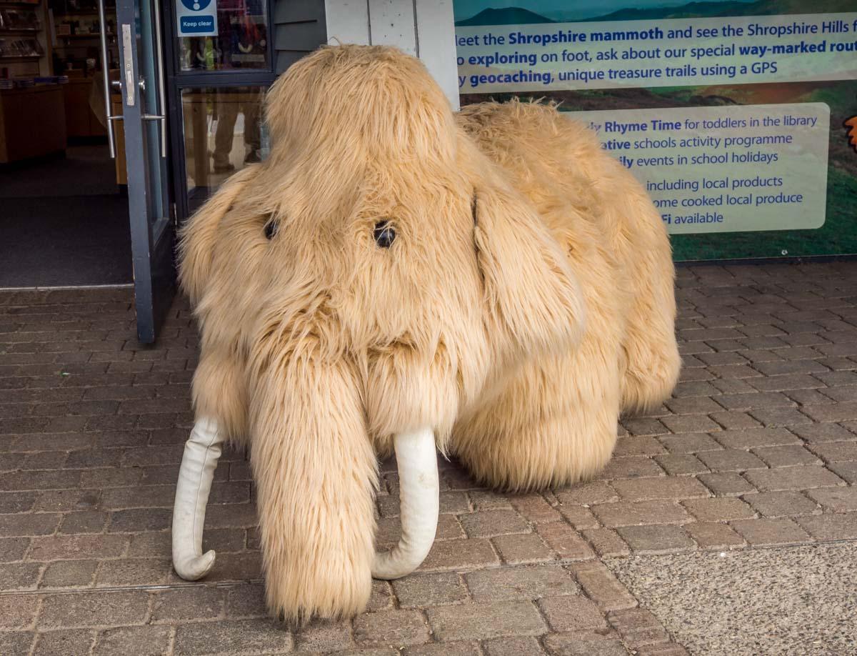 Secret Hills Discovery Centre shropshire mammoth
