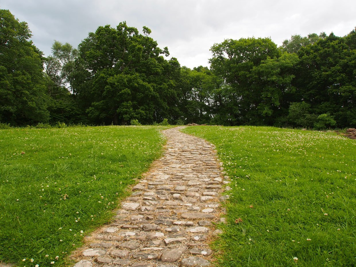 pathway to the woods around the castle