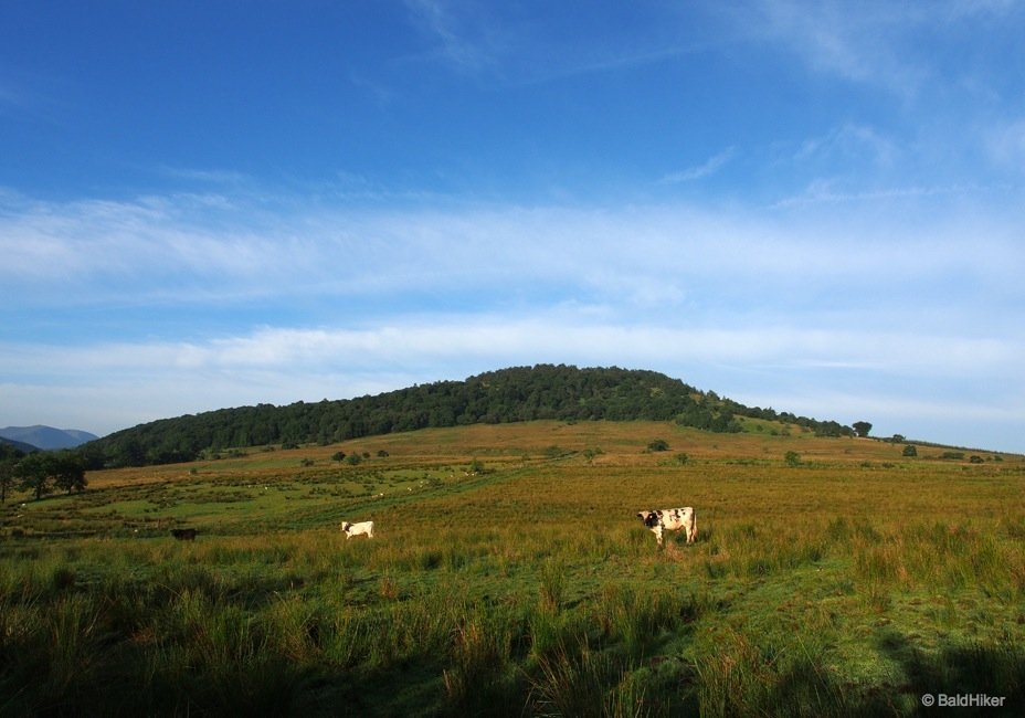 The unassuming but wonderful Great Mell Fell from the roadside