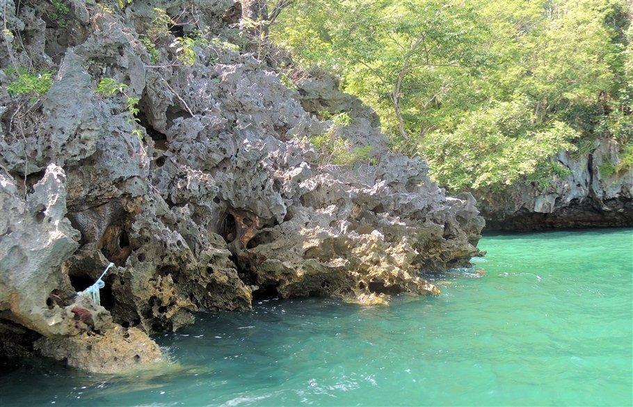 Pic 2 Sarah Rees Hong Island coastline- lagoon