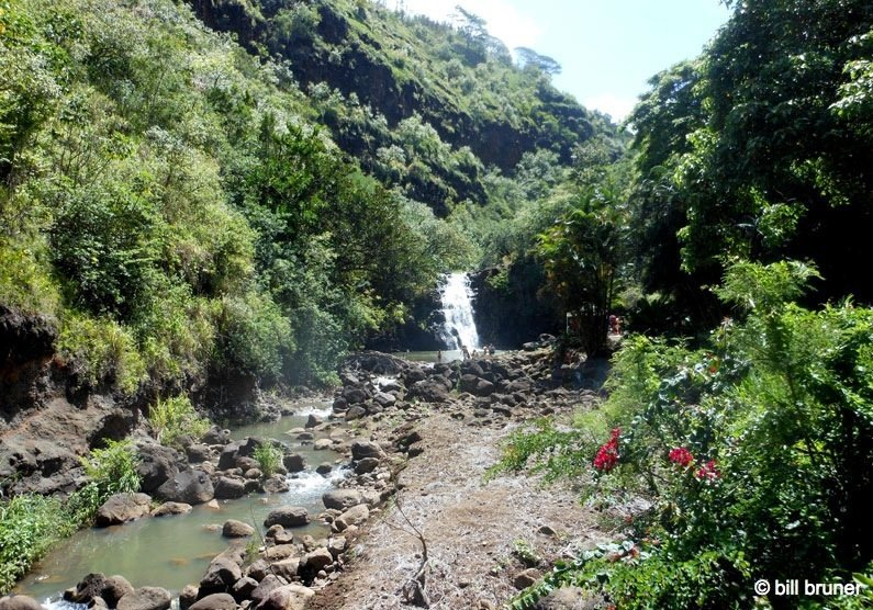 Picture-7-Waimea-Falls Waimea Valley Oahu, Hawaii Waimea Falls Trail