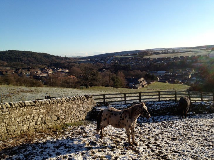 Rothbury_horse Winter Strolling By Surprise – Rothbury