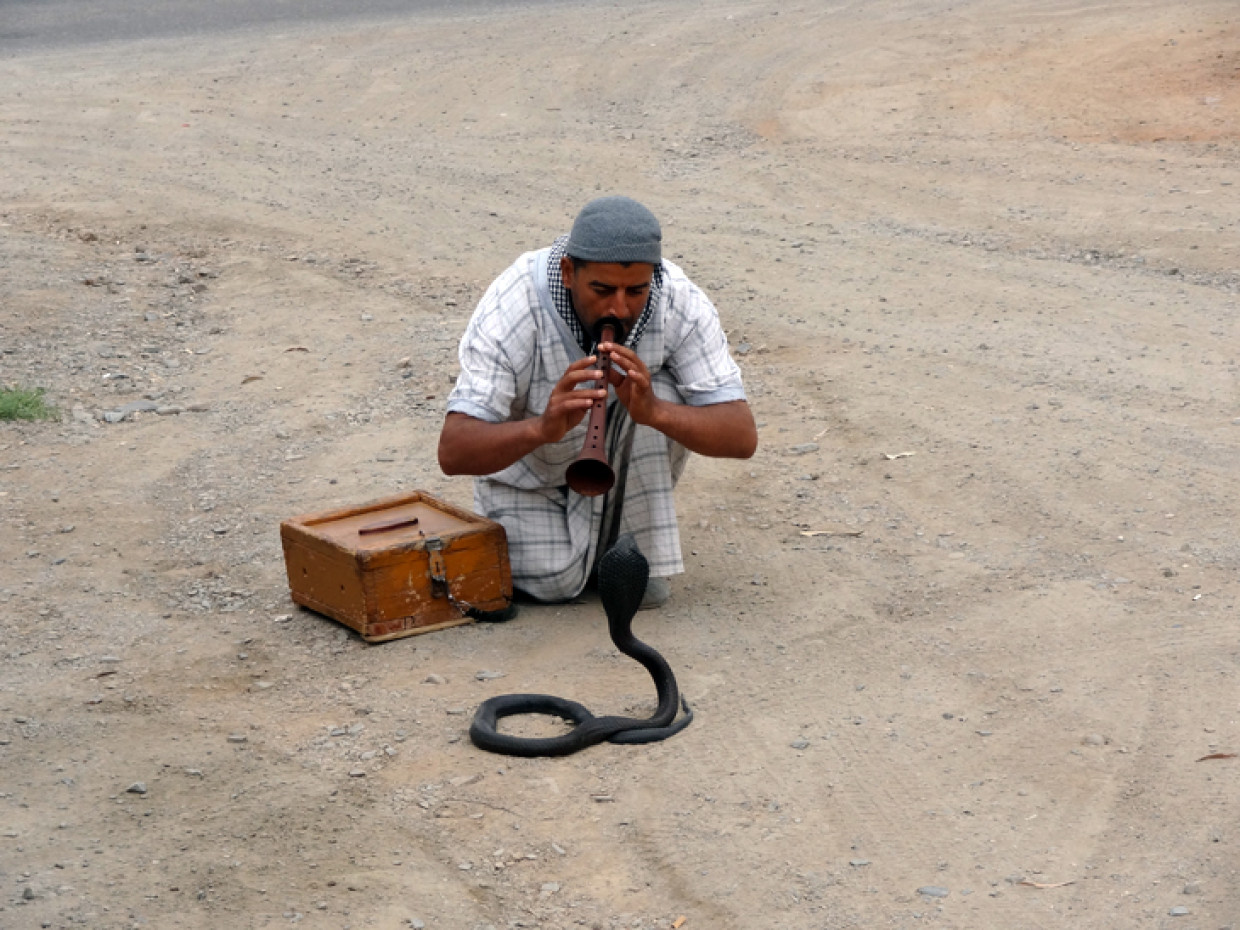 Some roadside entertainment on my way back to Marrakech :)