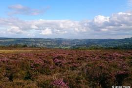 Stanton-Moor-Edge_main