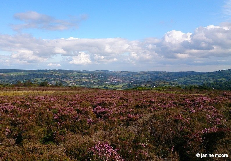 Stanton Moor and the Nine Ladies in the Derbyshire Dales