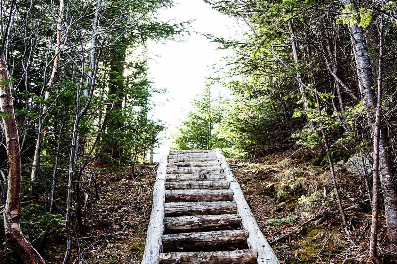 TMD_ECT_005-newfoundland Newfoundland - East Coast Trail