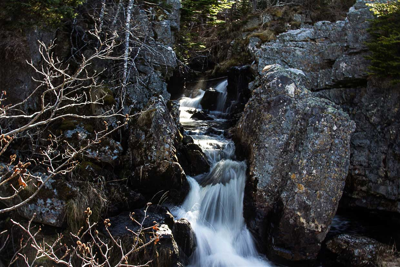 TMD_ECT_006-newfoundland Newfoundland - East Coast Trail