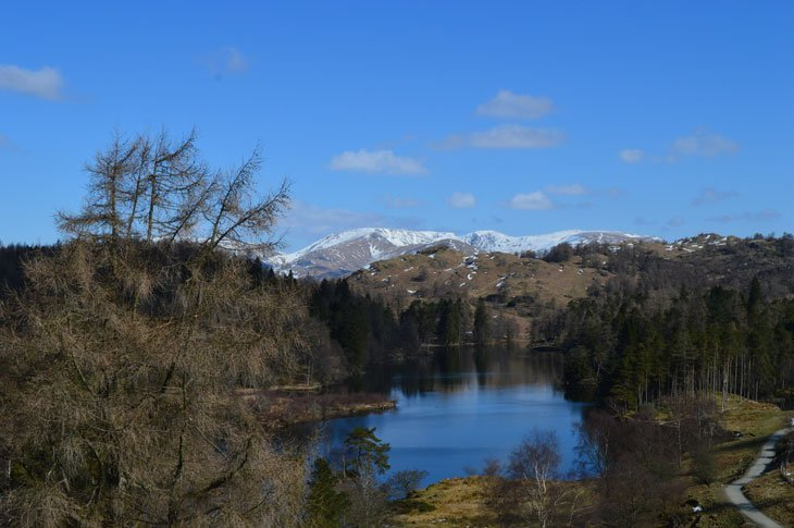 winter at tarn hows