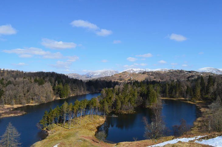 Tarn Hows from above