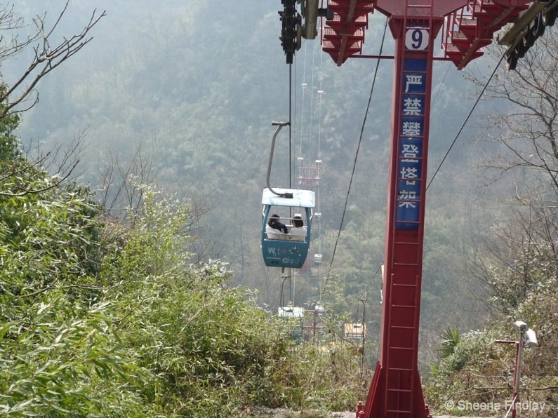 The-Baiyun-Cableway-china A hike up and across Qingcheng Mountain of China