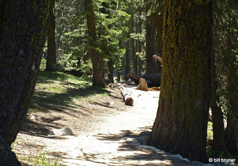Tokopah-1 Tokopah Falls – Sequoia National Park