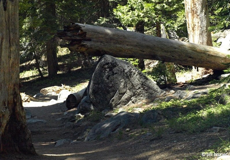 Tokopah-8 Tokopah Falls – Sequoia National Park
