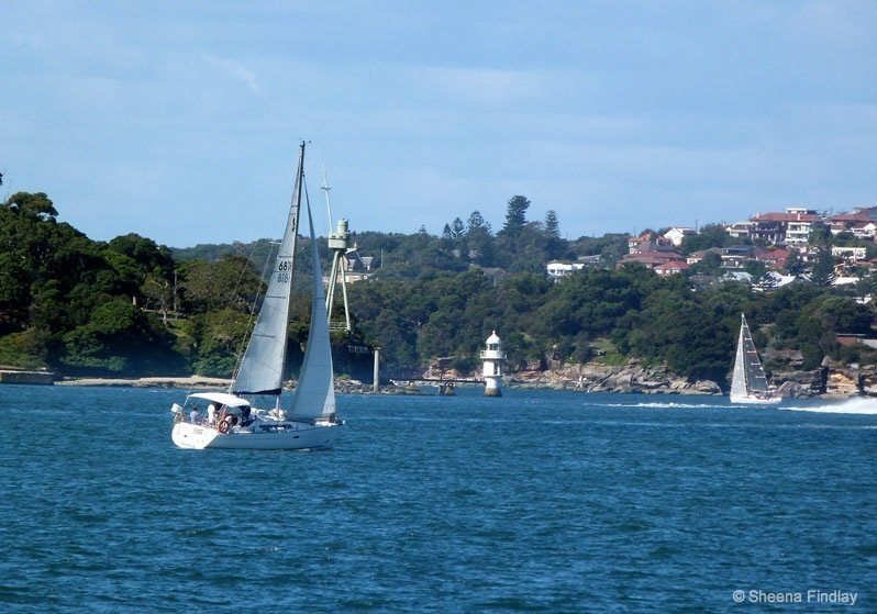 Yachts- Sydney