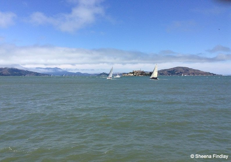 Yachts-enjoying-the-wind-Alcatraz-in-the-background Beyond the streets of San Francisco