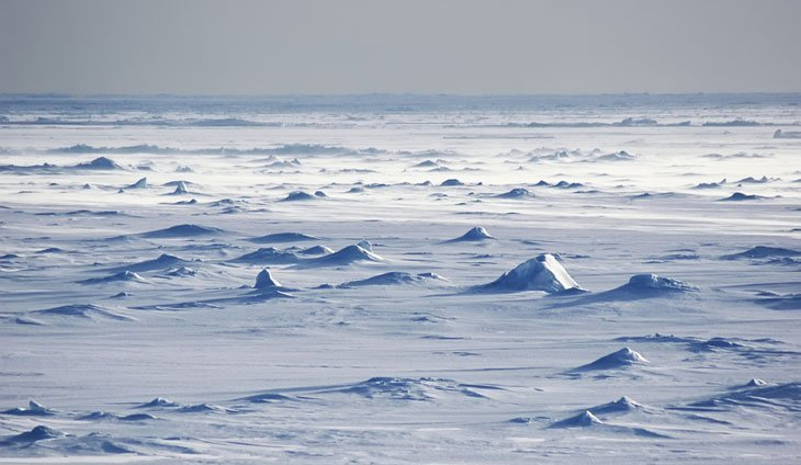 antartic desert