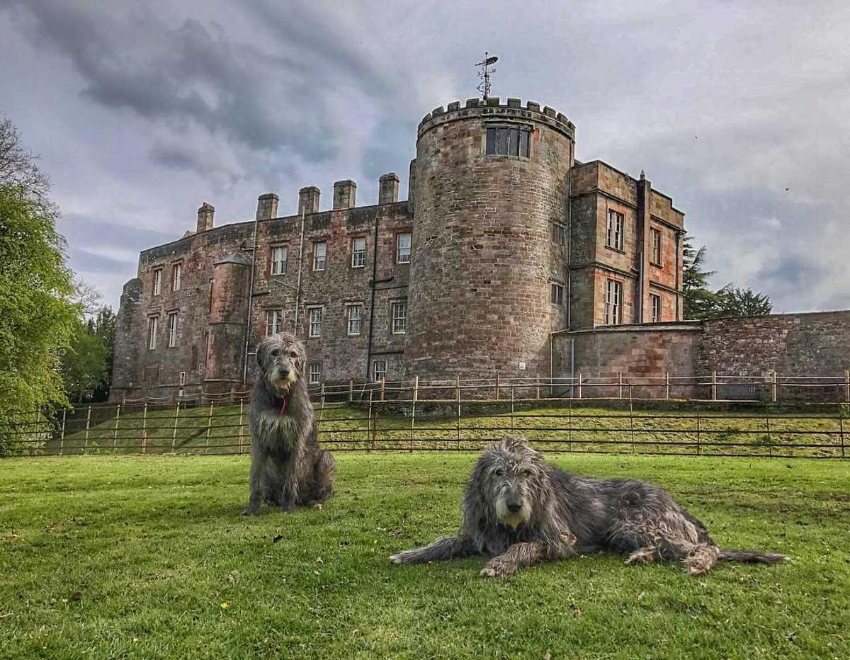 appleby-castle-10 Appleby Castle - A Stay In History