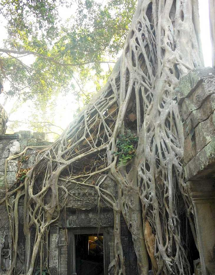 Angkor Wat – The Ancient Temple City Of Cambodia