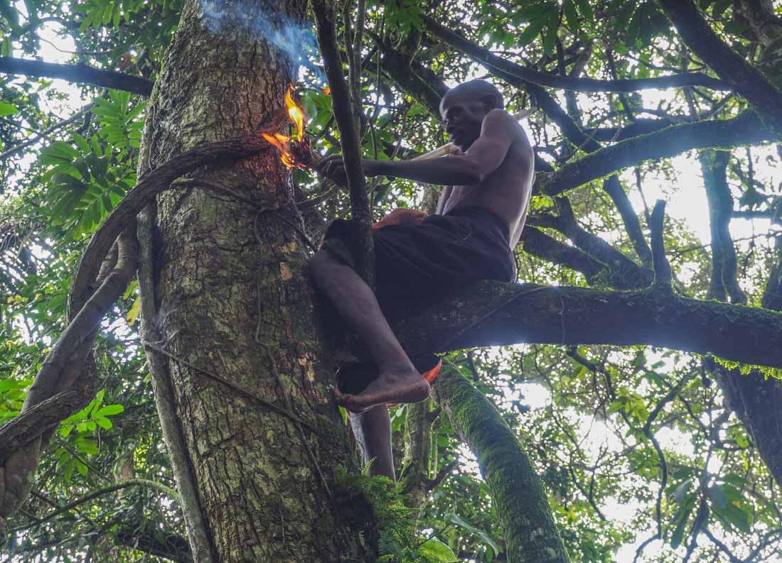 batwa-pygmies-5 Time with the Batwa People of Bwindi Impenetrable Rainforest