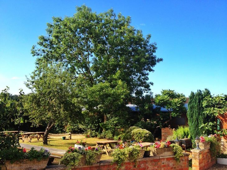 beergarden Wiltshire – Unwind at The Green Dragon