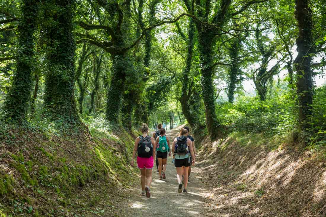 Special Highlights from El Camino Hike with G Adventures
