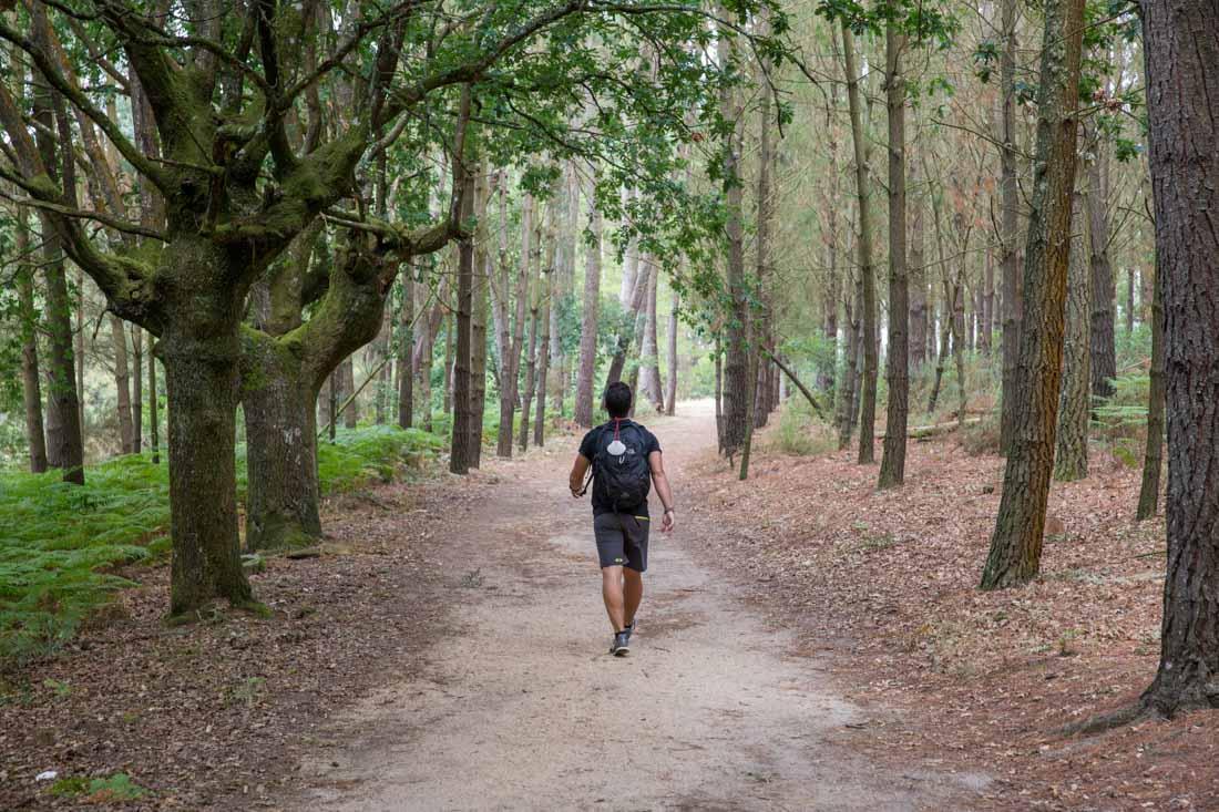 Walk The Camino de Santiago