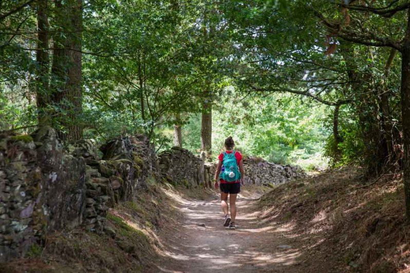 final stage camino trail