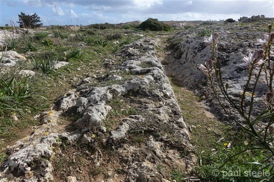 clapham-junction-malta-4-Dingli-Cart-Ruts Malta – Clapham Junction (Dingli Cart Ruts)