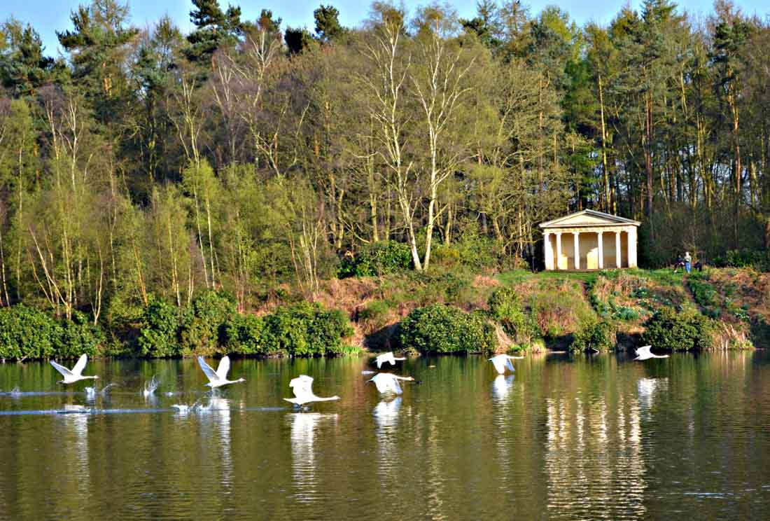 clumber-park-12 Clumber Park, Discovering the Gems