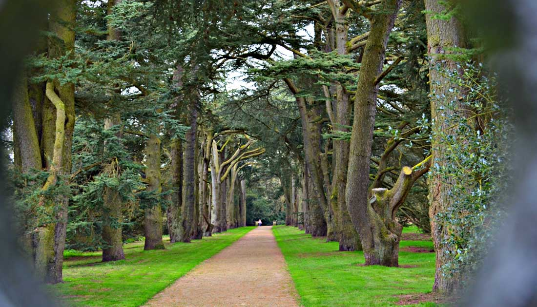 Clumber Park, Discovering the Gems 1