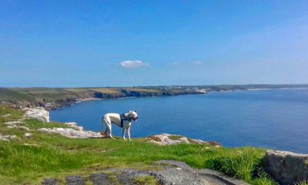 A Cornish Escape, Tin Mines and Coves