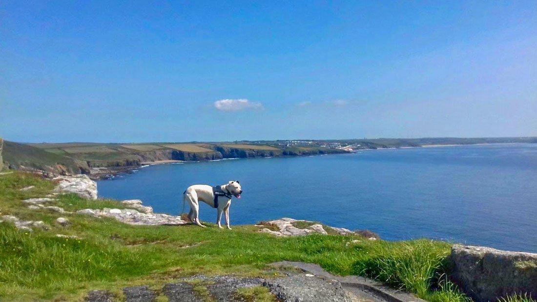 A Cornish Escape, Tin Mines and Coves 1